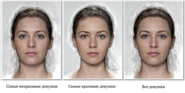 Как сделать модель лица по
