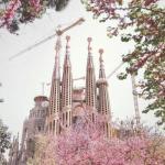 Барселона, ты прекрасна!